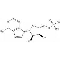 5'-腺苷酸(AMP-H)CAS NO.61-19-8