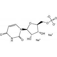 5'-尿苷酸二钠 CAS NO.3387-36-8
